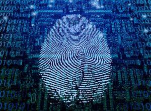 Секс, ложь и исследования киберпреступлений